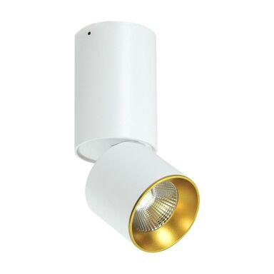 Oprawa stropowa natynkowa NIXA biało-złota LED IL MIO