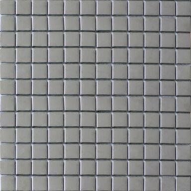 Mozaika LAGO 30 x 30 IRYDA