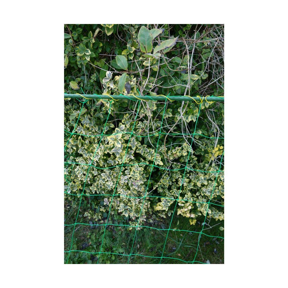 Siatka Do Pnaczy 1 8 X 1 8 M Zielona Podporki Wiazadla Do Roslin W Atrakcyjnej Cenie W Sklepach Leroy Merlin