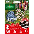 Mieszanka kwiatów WALC VILMORIN