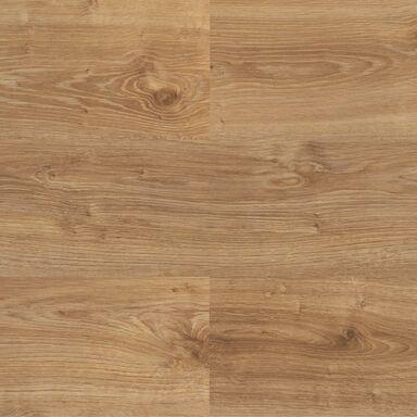 Panel podłogowy laminowany DĄB BAZYLI AC4 8 mm PROMO FLOORING