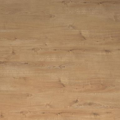 Panel podłogowy laminowany DĄB TATRY AC4 8 mm ERGO FLOOR